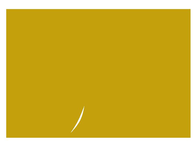 Bodega del Sur Winery